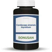 Cordyceps sinensis mycelium Bonusan