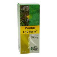 Prunus L 12 forte Pflüger