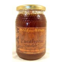 Eucalyptus Wild about Honey
