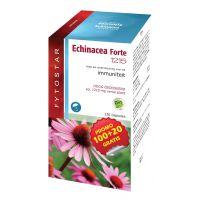 Echinacea forte 1215 maxi Fytostar